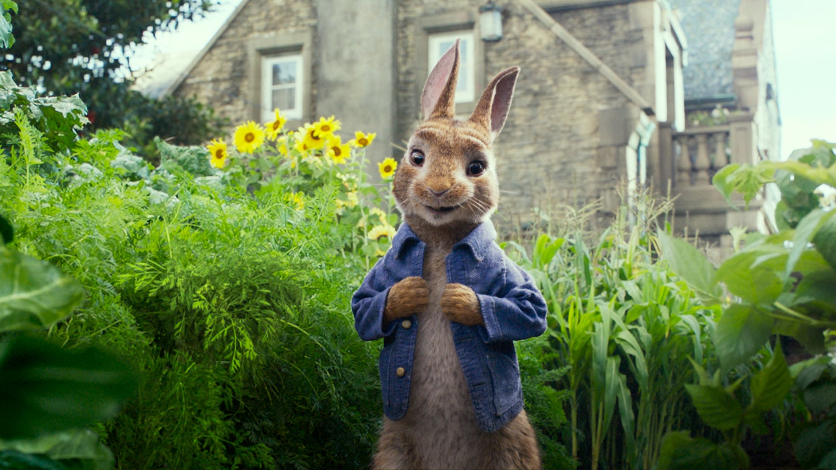 Peter Rabbit - Movie Trailer, Info, Images & More